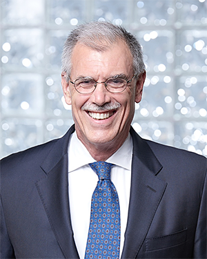 The Honorable Donald Verrilli